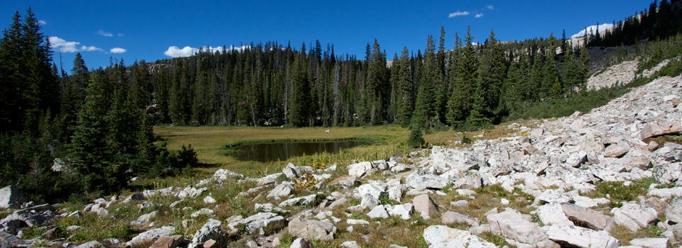 Cuberant Basin, Uintas, September 2010