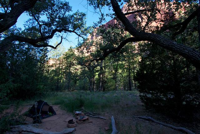 Morning in Camp #9