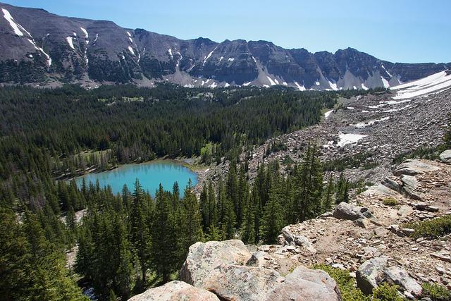 Lake BR-24