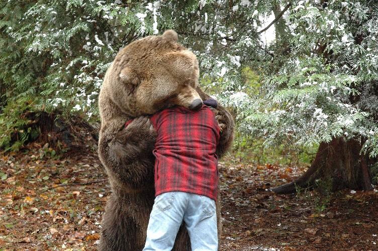 002-man-loses-head-to-bear-web.jpg