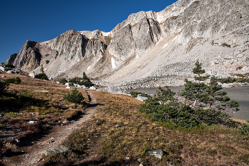 01 Medicine Bow National Forest.jpg
