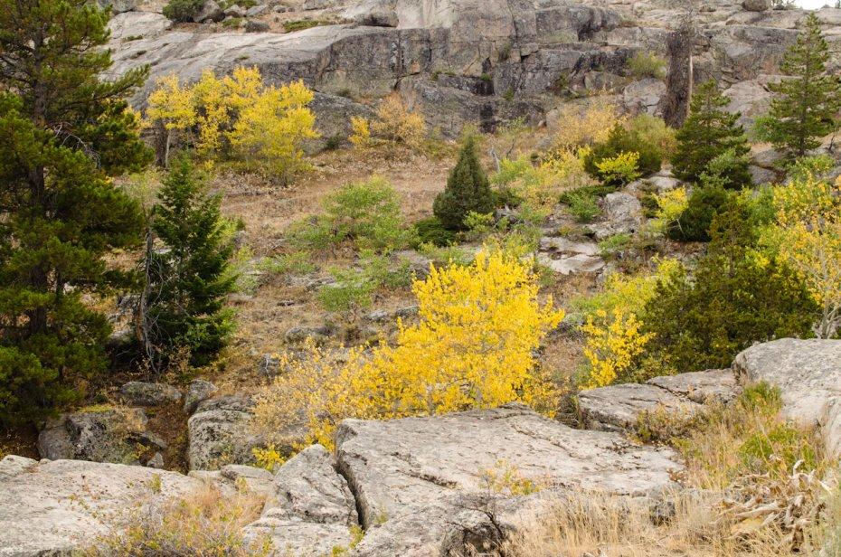 04 Fall Colors.jpg