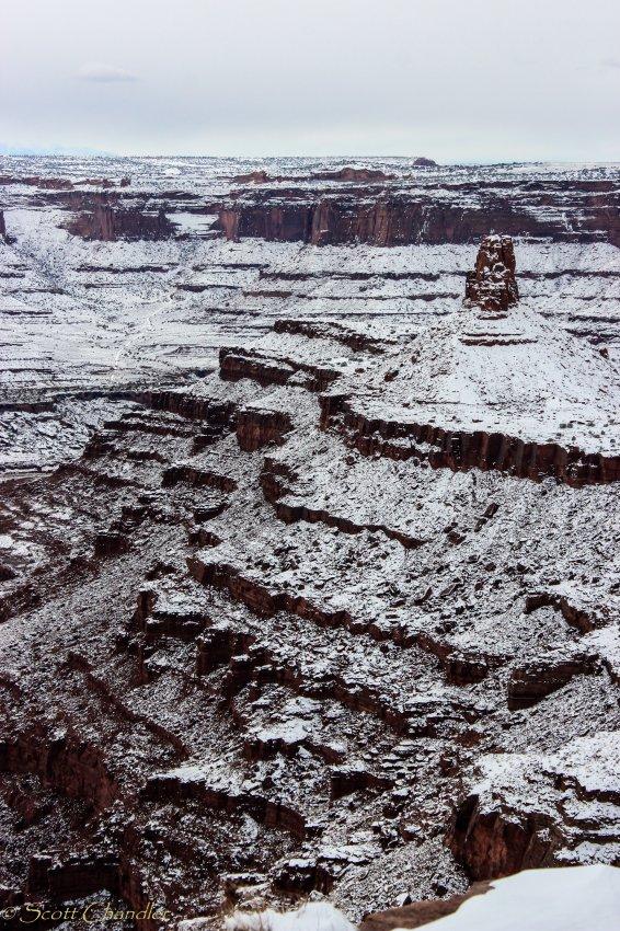 12-15 Snow-14.jpg