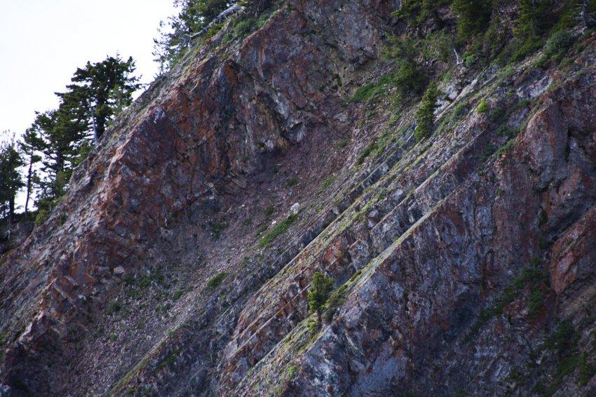 138_wellsville_mountain-goat.jpg