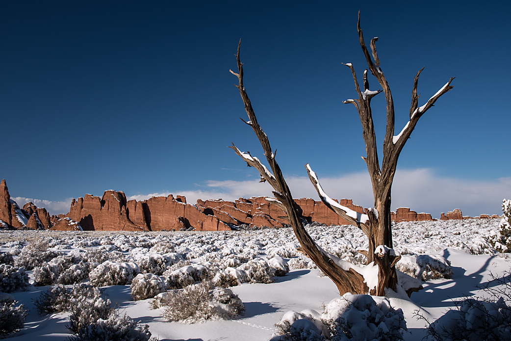 16 Arches National Park.jpg