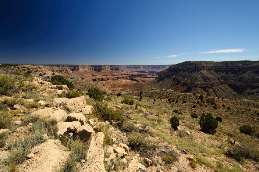 2014_Arizona_Strip_13.jpg