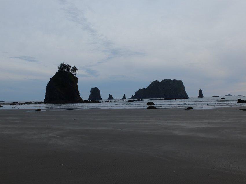 2015-06-18 olympic coast 1042.JPG