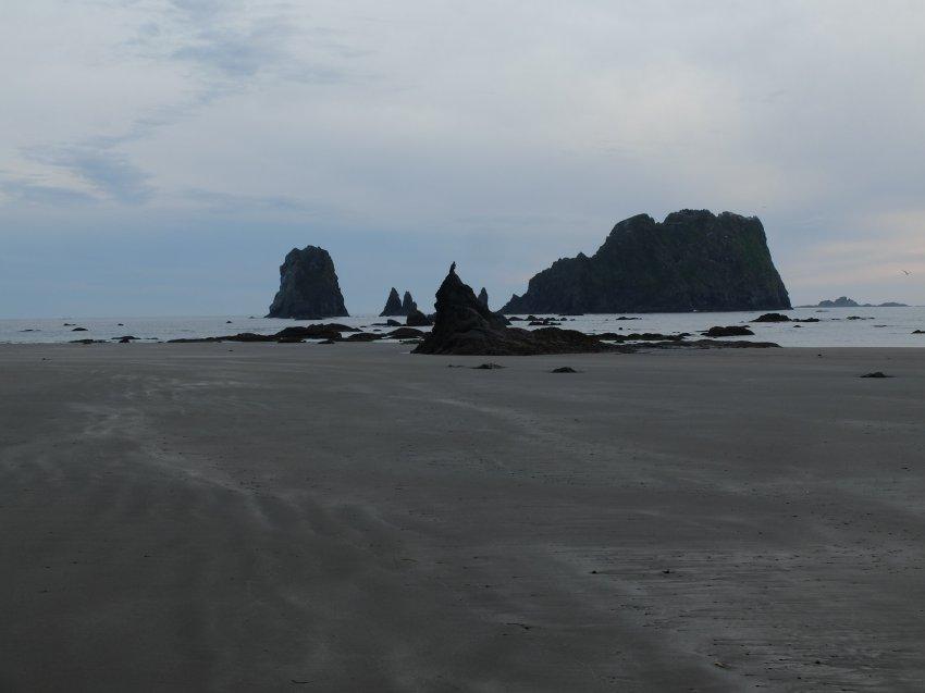 2015-06-18 olympic coast 1045.JPG