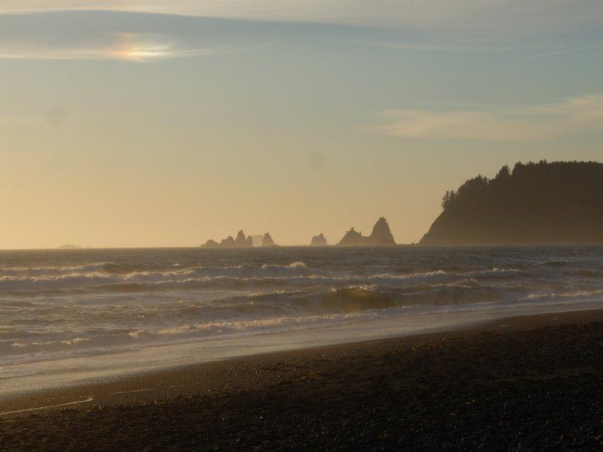 2015-06-18 olympic coast 240.JPG