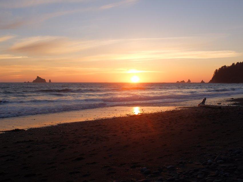 2015-06-18 olympic coast 278.JPG