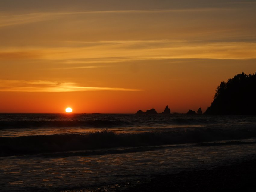 2015-06-18 olympic coast 288.JPG