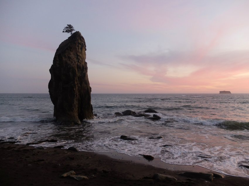 2015-06-18 olympic coast 331.JPG