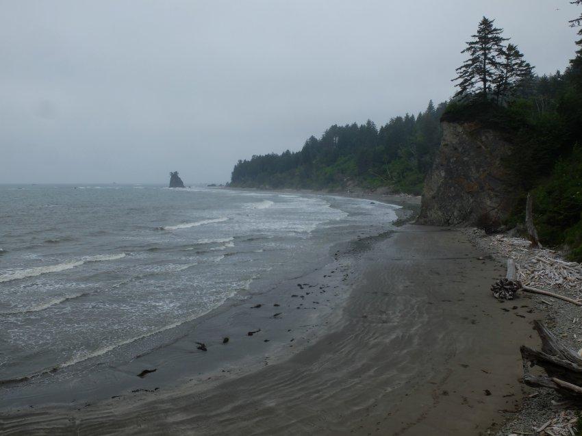 2015-06-18 olympic coast 490.JPG