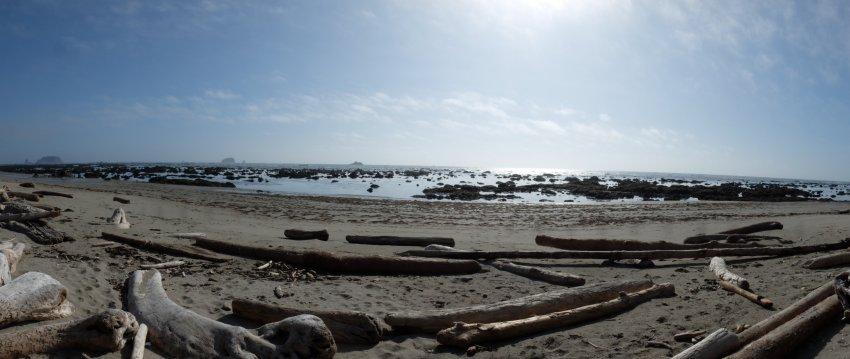 2015-06-18 olympic coast 574.JPG