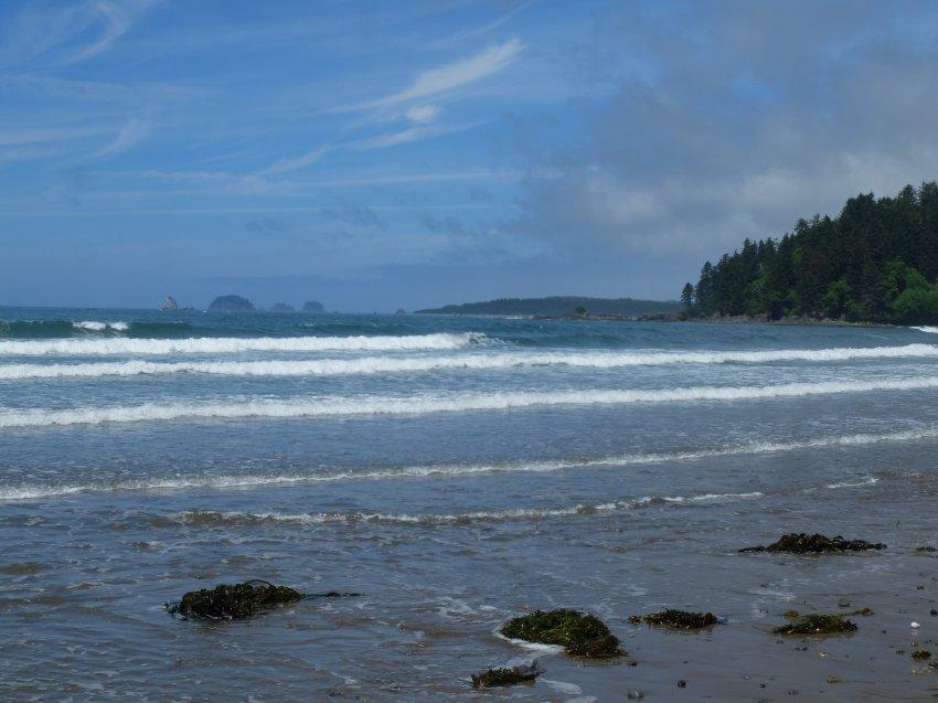 2015-06-18 olympic coast 702.JPG