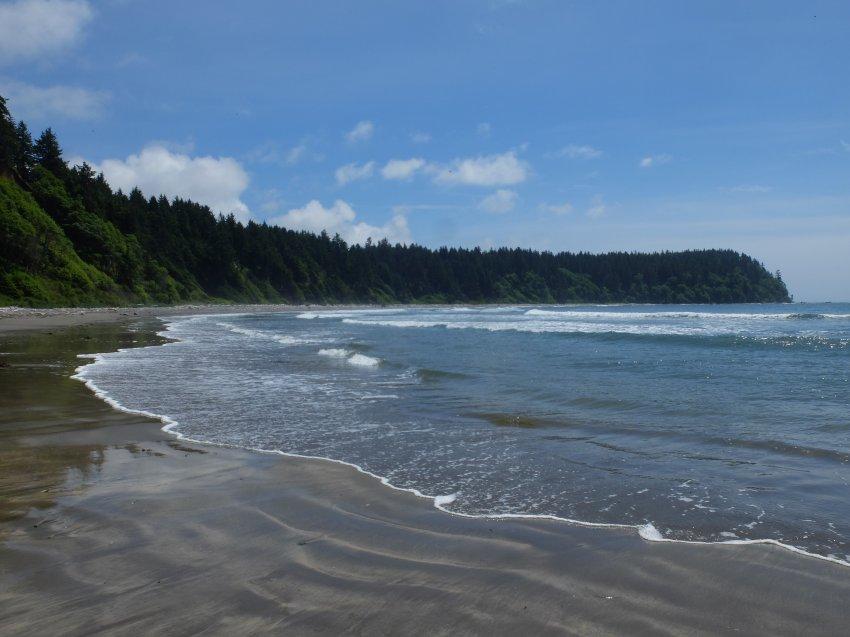 2015-06-18 olympic coast 711.JPG
