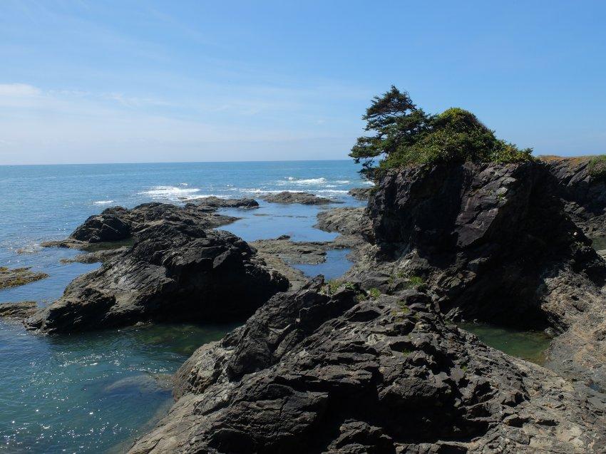 2015-06-18 olympic coast 721.JPG