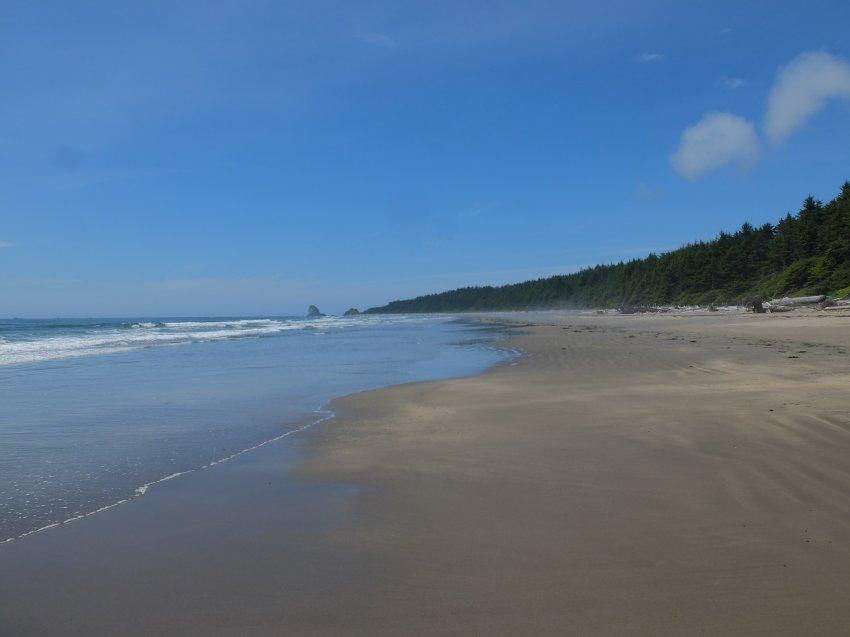 2015-06-18 olympic coast 738.JPG