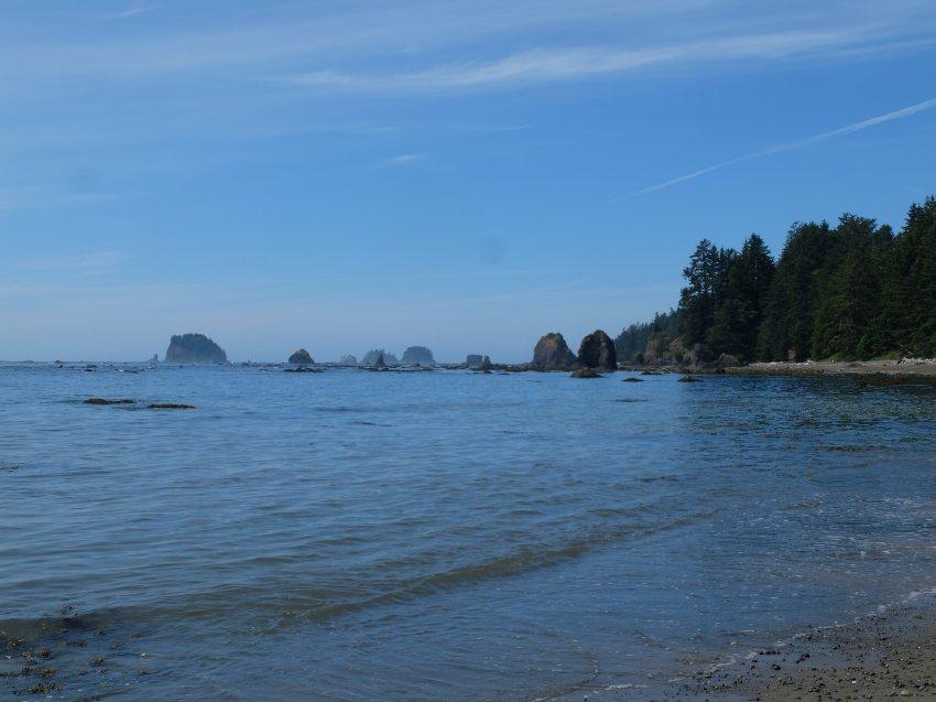 2015-06-18 olympic coast 751.JPG