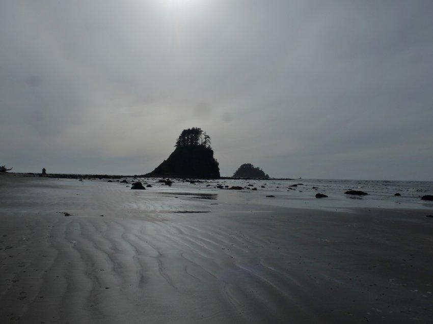 2015-06-18 olympic coast 795.JPG