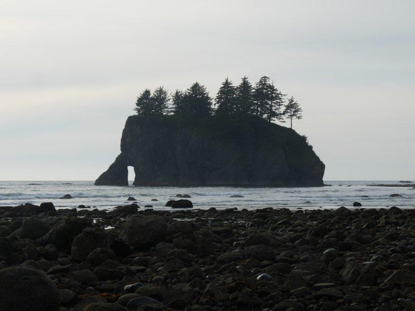 2015-06-18 olympic coast 831.JPG