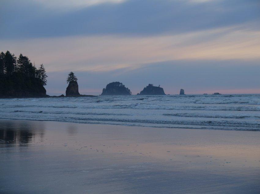 2015-06-18 olympic coast 876.JPG