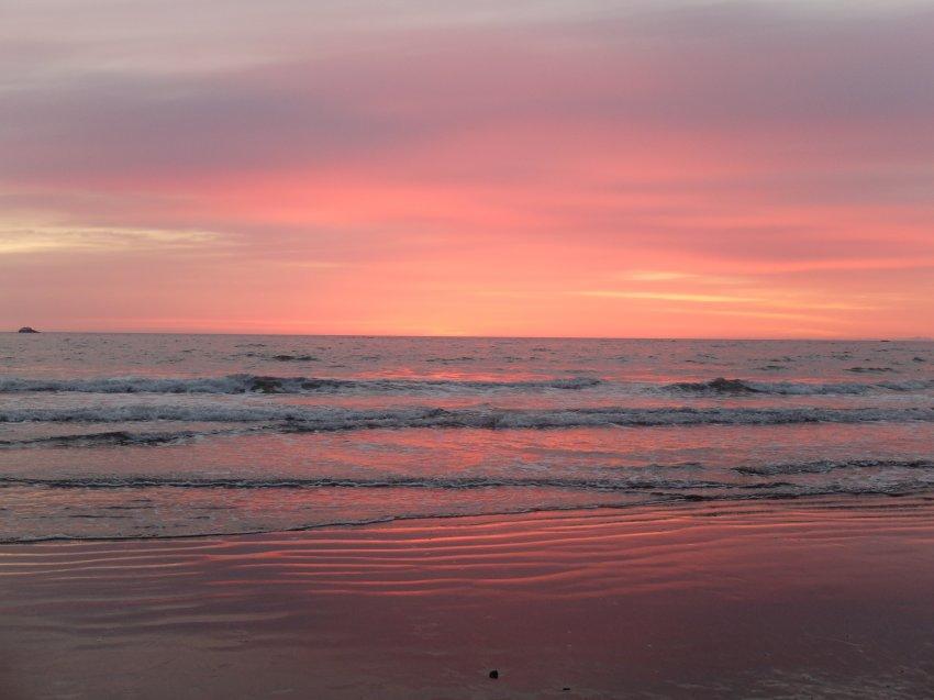 2015-06-18 olympic coast 896.JPG