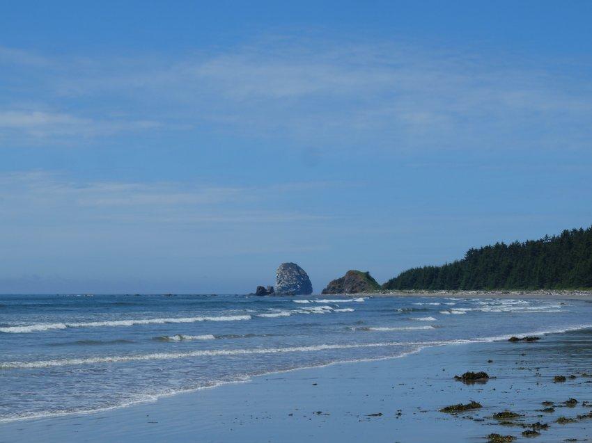 2015-06-18 olympic coast 953.JPG