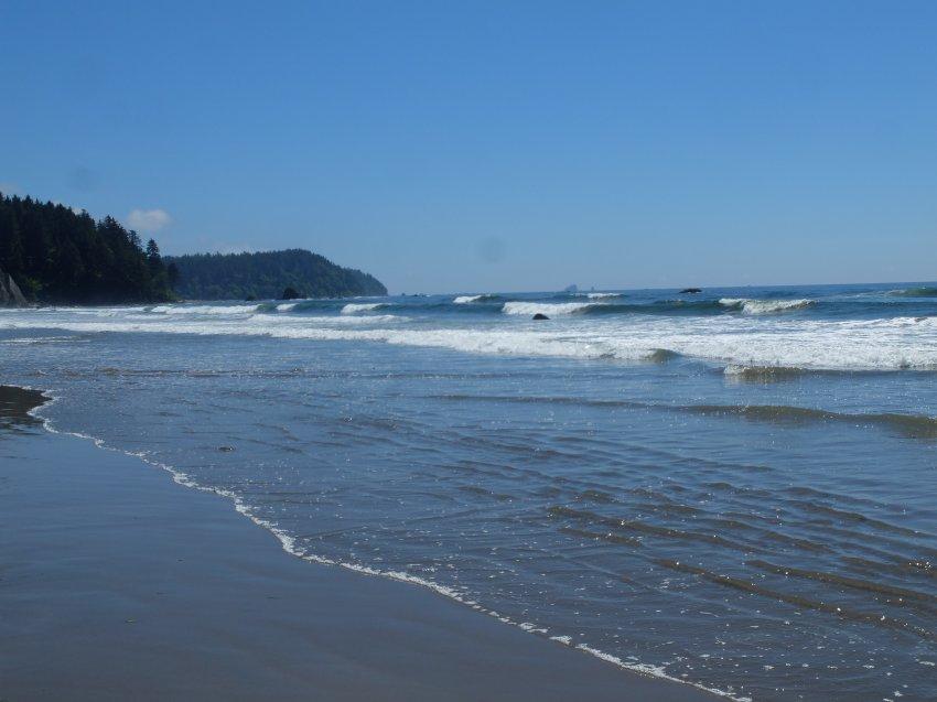 2015-06-18 olympic coast 957.JPG