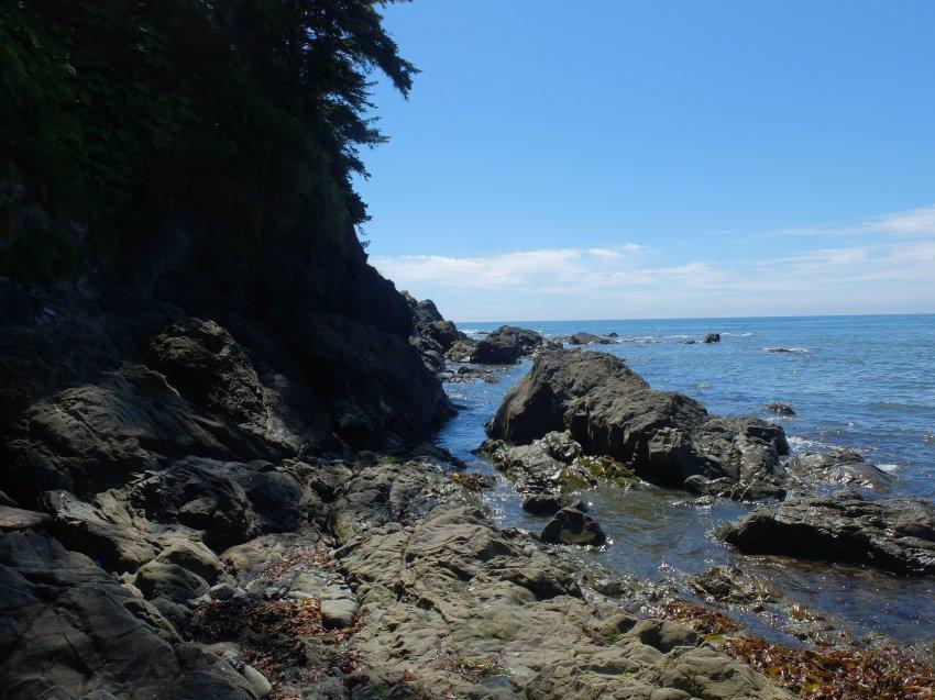 2015-06-18 olympic coast 966.JPG
