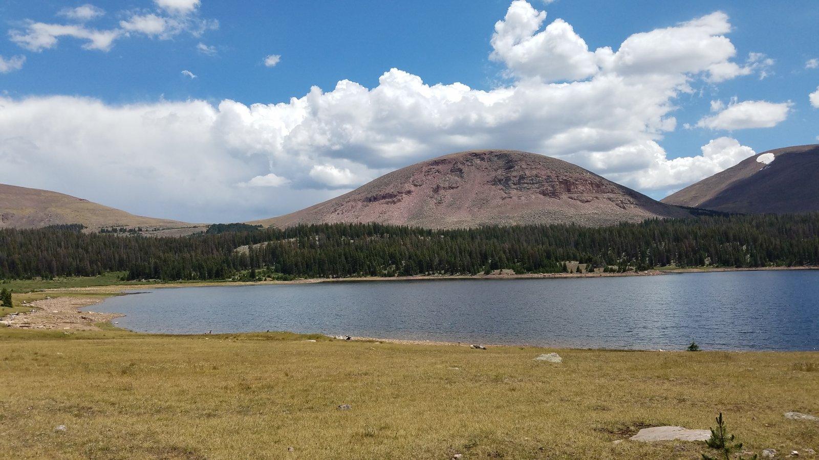 20200727_135129 Fox Lake.jpg