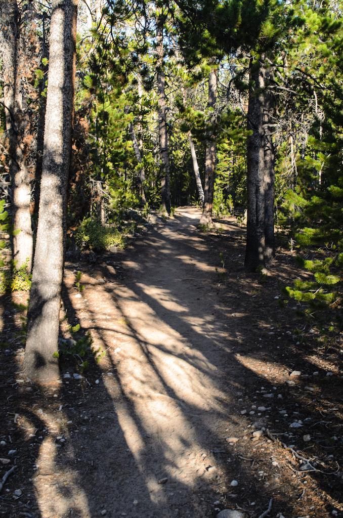 28 Trail.jpg
