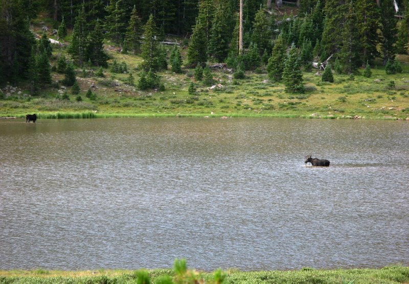 4875 - Uintas - Gilbert Lake.jpg