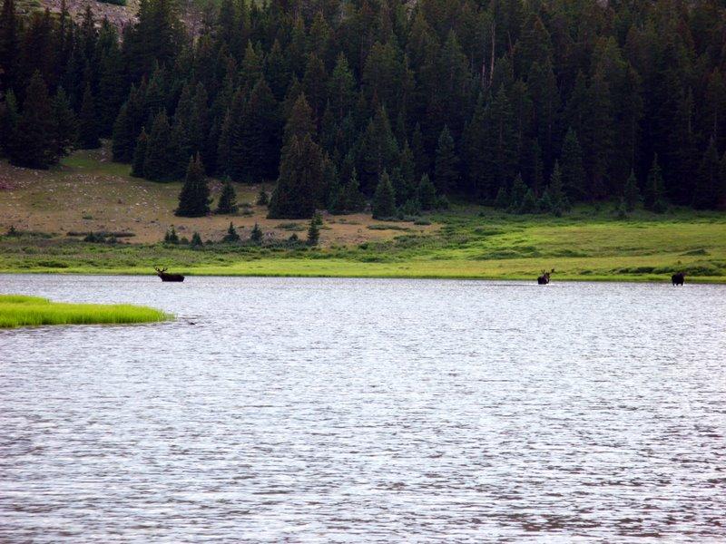 5067 - Uintas - Gilbert Lake.jpg