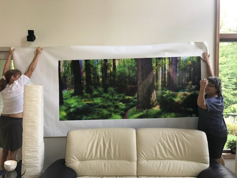 7ft-canvas-Redwood-tryout.jpeg