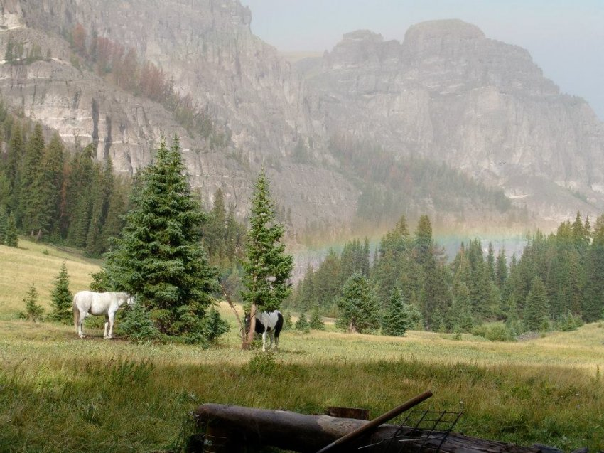 Absaroka Pack Camp.jpg