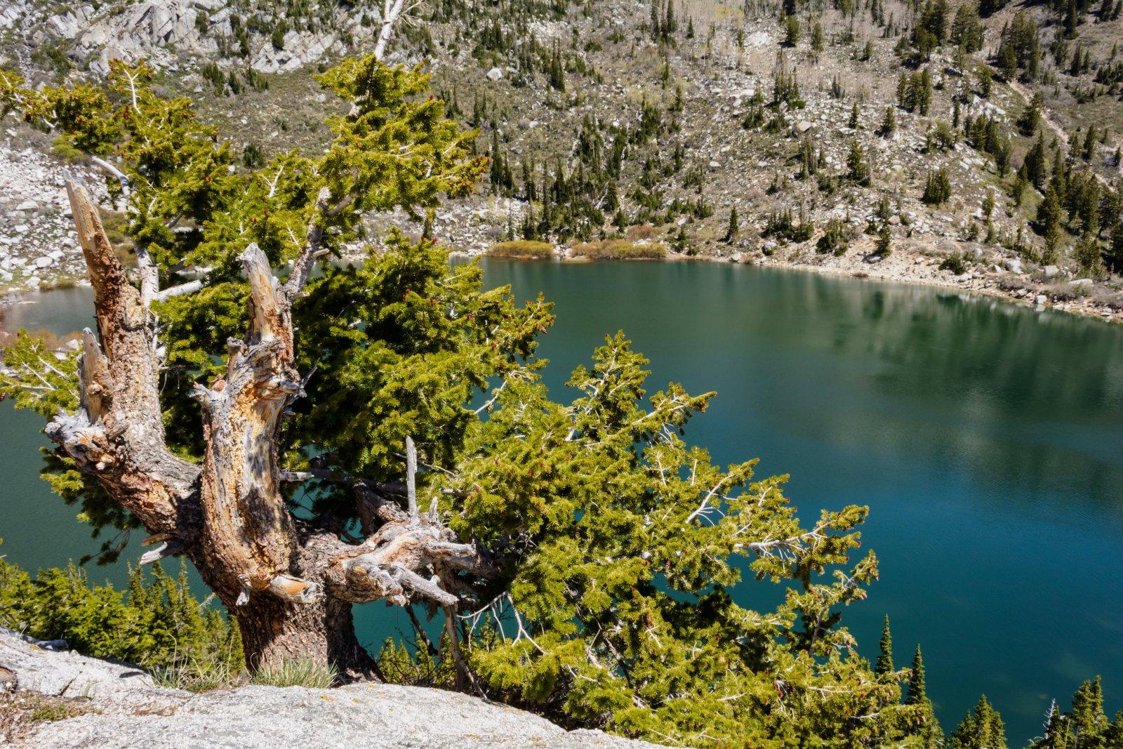 AF Silver Lake 5-20180509-proc.jpg