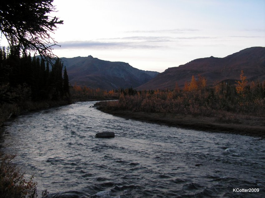 Alaska 2009 150.jpg