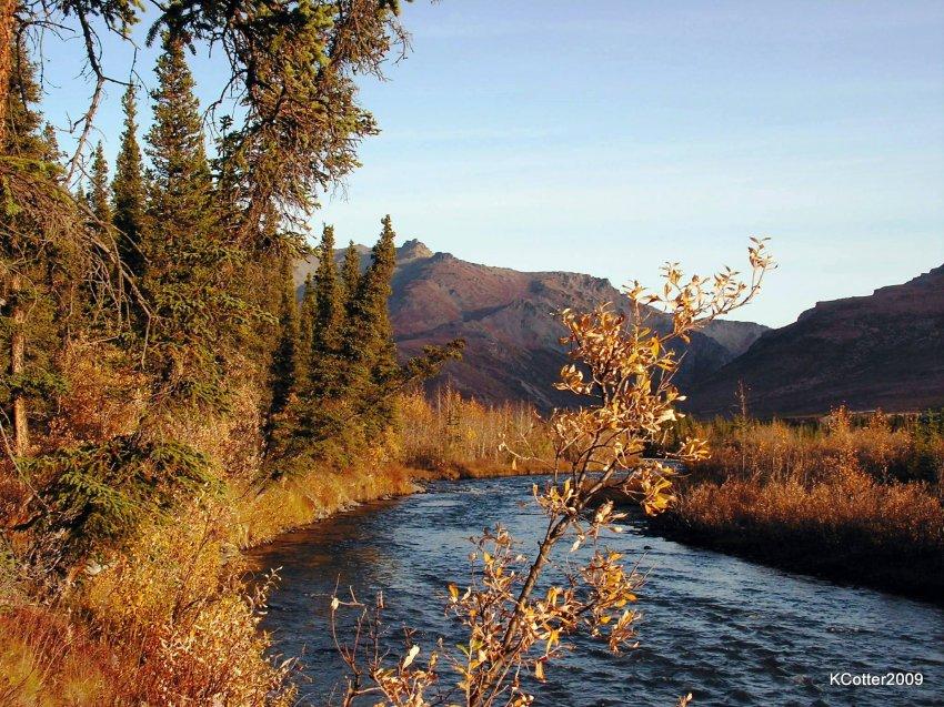 Alaska 2009 171.jpg