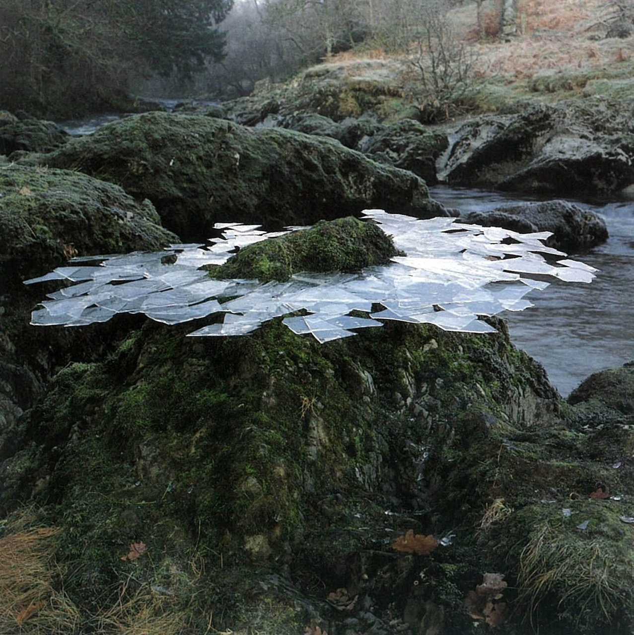 andy-goldsworthy-leaf-sculptures-thin-ice-formed-overnight-lifted-from-river-pools-frozen-arou...jpg