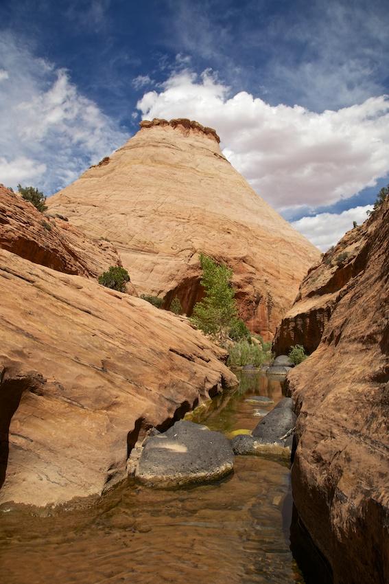 boulder-creek-escalante-18.jpg