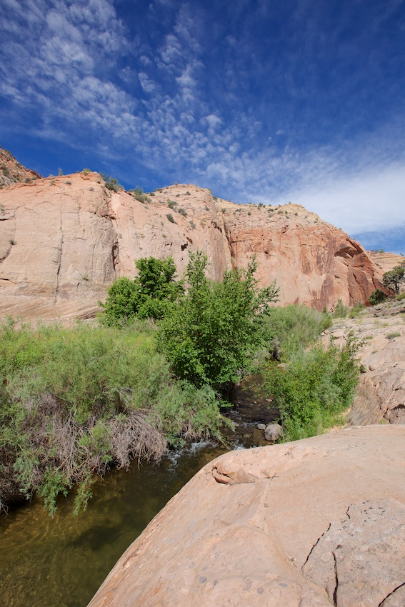 boulder-creek-escalante-24.jpg