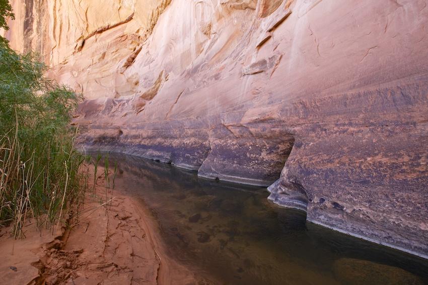 boulder-creek-escalante-32.jpg