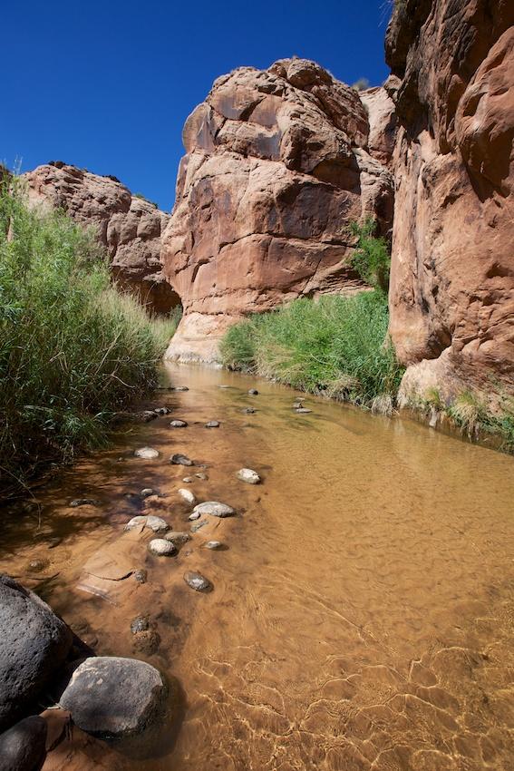boulder-creek-escalante-35.jpg