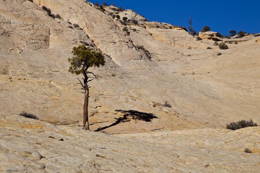 boulder-mail-trail-2.jpg