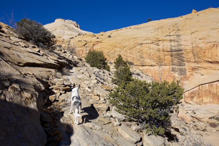 boulder-mail-trail-29.jpg