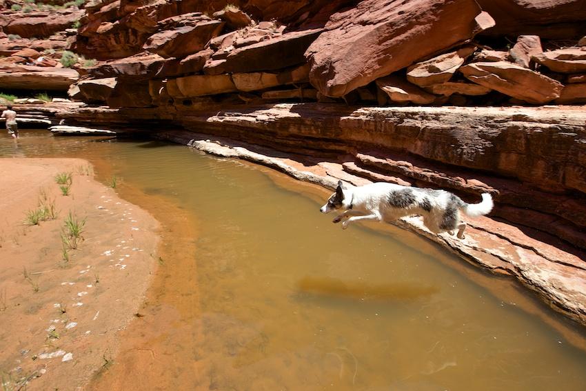 bowns-canyon-20.jpg