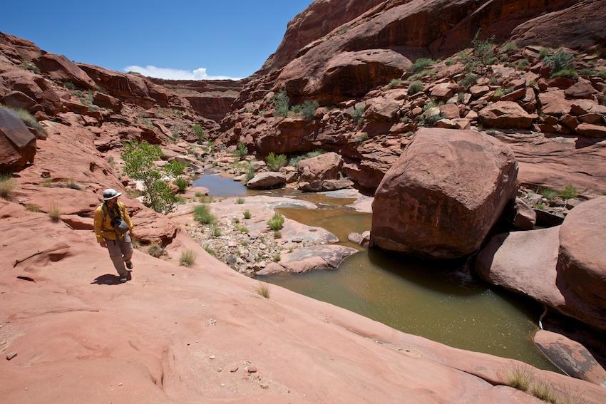 bowns-canyon-21.jpg