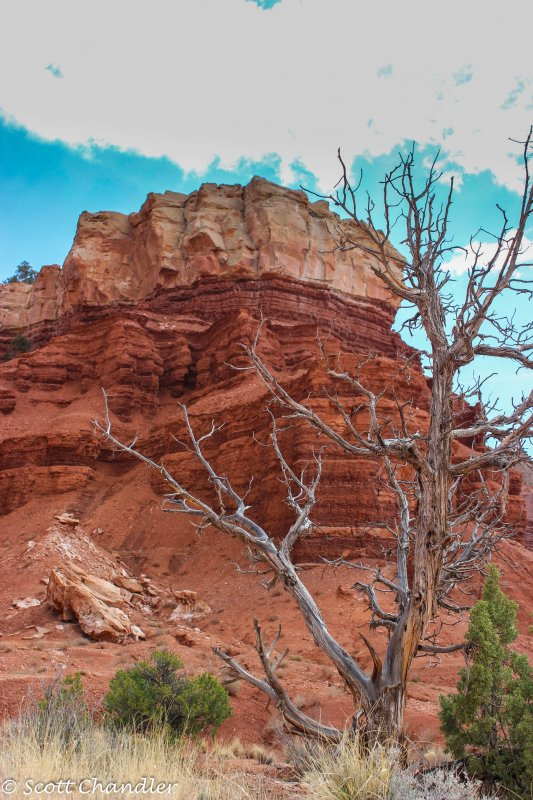 Capital Reef- Chimney Rock-Spring Canyon 007.jpg