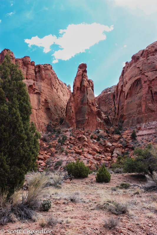 Capital Reef- Chimney Rock-Spring Canyon 021.jpg